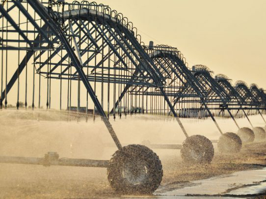 More cash flows for NSW irrigators​