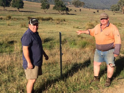 New fencing silver lining post bushfire