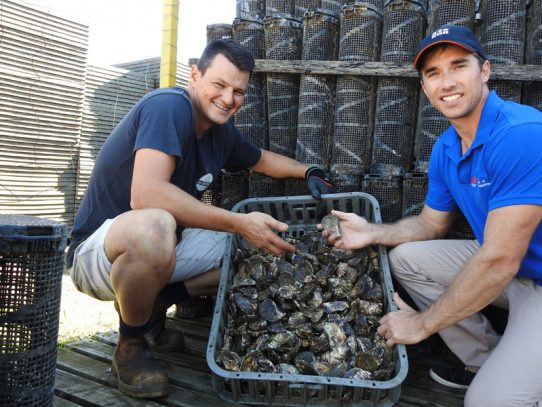 Seafood industry shines