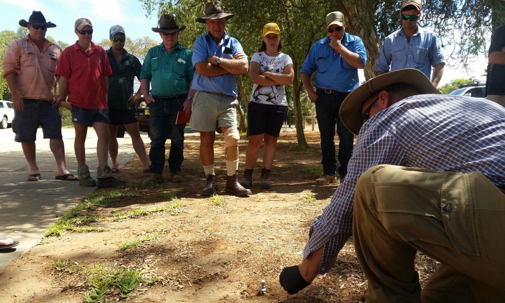 Great opportunity for landholders in Pooncarie to upskill in pest animal management
