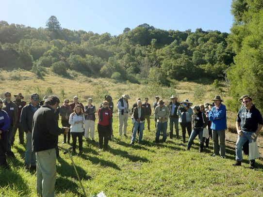Riparian restoration field day for rural landholders