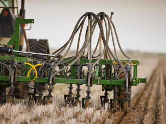 Break the pest cycle before sowing