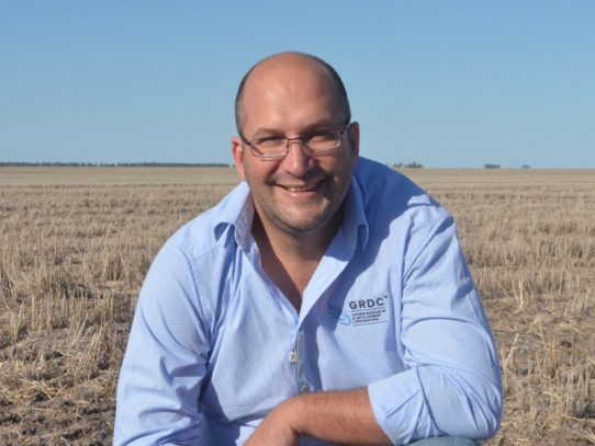 Grain profit in focus at GRDC Updates in NSW