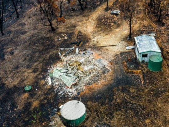 NSW Government coordinates bushfire clean-up