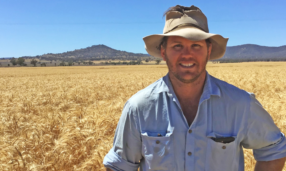 Bundella grower lands a top crop with Lancer