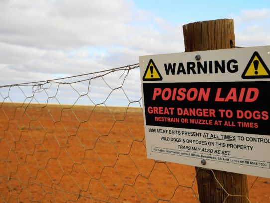 EPA issues fine for breach of dog baiting rules