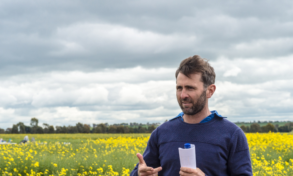 NSW growers invited to hyper yielding crops field day